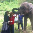 Marina Ruy Barbosa e o noivo, Xandinho Negrão, no acampamento de elefantes Elephant Life Experience, em Mae Taeng, na Tailândia