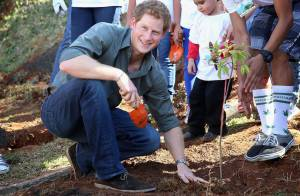 Príncipe Harry planta árvore durante visita a projeto social em São Paulo
