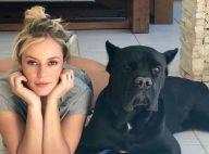 Paolla Oliveira toca violão e cachorro chama atenção: 'Plateia'. Veja vídeo!