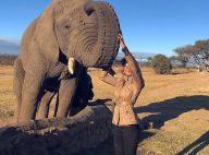 Grazi Massafera faz safári com a filha e posa com elefante na África do Sul
