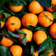 Os antioxidantes presentes no suco de laranja podem fornecer muitos benefícios para a saúde, incluindo a prevenção do câncer e derrame.