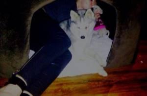 Miley Cyrus posta foto deitada dentro de casinha de cachorro com seus dois cães