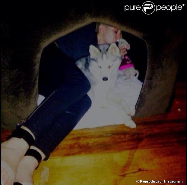 Miley Cyrus dorme junto com os cães Bean e Floyd na casinha de cachorro, como mostra a imagem postada nesta quarta-feira, 16 de janeiro de 2013