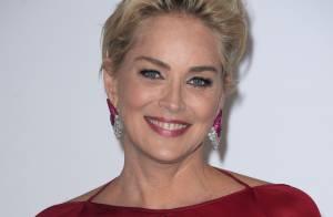 Sharon Stone e Antonio Banderas estão namorando: 'Se divertindo'