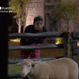 Em 'A Fazenda 11', Hariany conversa com ovelhas após insônia na madrugada: ' Eu não sei mais o que eu faço. Eu tô carente. E agora? Não dá mais não'