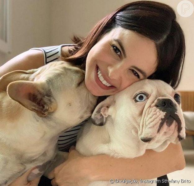 Sthefany Brito se irritou com perguntas de seus seguidores sobre o que ela faria com seus cachorros caso o filho nascesse com alergia aos pelos dos pets