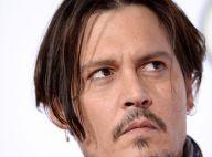 Johnny Depp pode ter cachorros sacrificados na Austrália. Entenda o caso!