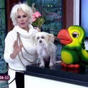 Ana Maria Braga usa colar feito de feijão na TV para criticar preço do alimento