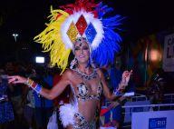 Ticiane Pinheiro ganha fantasia para desfilar no Carnaval do Rio:'Meu pai pagou'