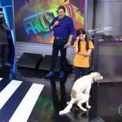 'Domingão': cachorro faz cocô no palco e internautas comentam. 'Oscar pra ele'