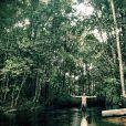 Rodrigo Simas gravou cenas de 'Além do Horizonte' em Manaus e Presidente Figueiredo (AM): 'Sempre que posso busco refugio na natureza'