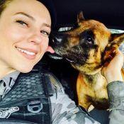Paolla Oliveira se despede de cão policial ao gravar 'A Força do Querer': 'Iron'