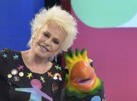 Ana Maria Braga admite namoro e Louro José a repreende: 'Volta para a pauta!'