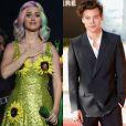 Katy Perry foi impedida de entrar na China por tempo indeterminado e o cantor ingês Harry Styles irá substituí-la no show da Victoria's Secret que acontece em uma terça-feira, dia 28 de novembro de 2017