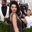 Ou o vestido fio-dental feito com apenas um pedaço de fio de nylon, aposta de Kendall Jenner para o MET Gala 2017