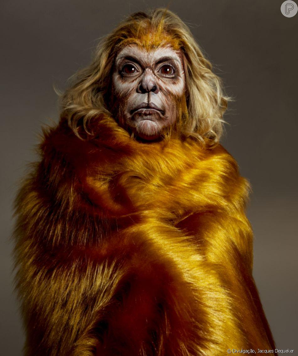 Na campanha da Kryolan com a AMPARA Animal, Astrid Fontenelle interpreta mico-leão-dourado