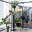 Projeto da arquiteta Júlia Guadix reforça a importância de ter plantas em casa