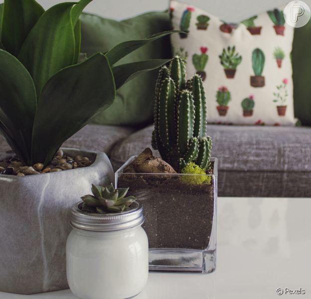 Dicas de decoração para ajudar a deixar a casa mais fresca