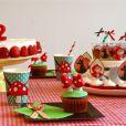 A empresa 'Festa das comadres' fez kit personalizado para Eva com tema Pequinique da Chapeuzinho Vermelho