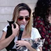 Tatá Werneck, dona de 12 gatos, adota mais cinco ao invadir o 'Encontro'
