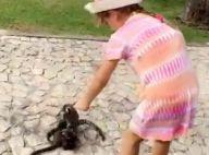Rafaella Justus alimenta macacos em viagem e é elogiada: 'Boazinha'. Vídeo!