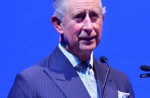 Príncipe Charles celebra 65 anos na Índia, em viagem de 9 dias com a mulher