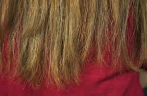 O cabelo ficou verde e está quebrado? Expert dá 7 dicas para recuperar os fios