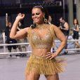 Além de rainha de bateria do Salgueiro, no Rio de Janeiro, Viviane Araujo também vai representar a Mancha Verde em São Paulo neste Carnaval