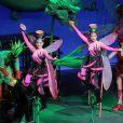 O tradicional Circo da China voltou ao Brasil, após 6 anos, com o espetáculo 'A Jornada do Panda Sonhador', em 2017