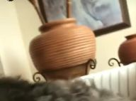 Sasha Meneghel fica com ciúmes de Bruna Marquezine e cadelinha: 'Ataca'. Vídeo!