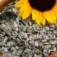 A vitamina B6 pode ser encontrada nas sementes de girassol