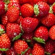 Segundo Patricia Davidson, a alimentação da mãe lactante deve priorizar melhores fontes de carboidratos, como frutas