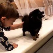 Filho de Gusttavo Lima, Gabriel ganha cachorrinho de estimação: 'Novo amor'