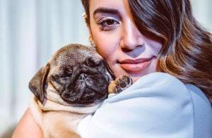 Loucos por animais! 100 fotos de pets de famosos que vão fazer você se apaixonar
