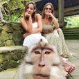 Anitta compartilhou fotos divertidas em seu Instagram, como encontro com macacos, durante passeio em Bali