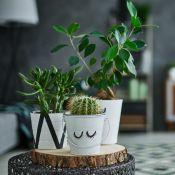 Qual é o seu estilo na decoração? 6 tendências de décor para se inspirar!