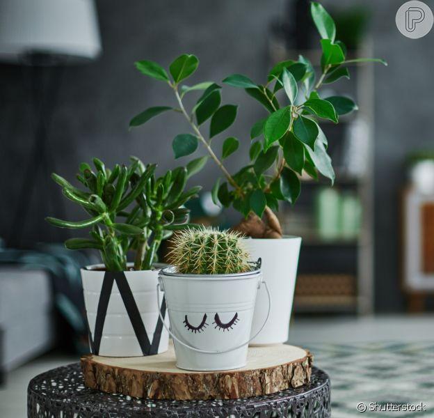Qual é o seu estilo na decoração? Inspire-se nas dicas