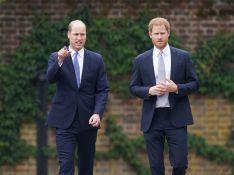 Harry e William selam 'trégua' sugerida por Kate Middleton ao homenagear Lady Di. Entenda!