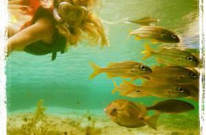 Carolina Dieckmann nada com peixinhos e publica foto no Instagram