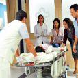 Paulinha (Klara Castanho) irá precisar de um transplante de fígado e Paloma (Paolla Oliveira) irá descobrir que Bruno (Malvino Salvador) não é pai biológico da menina