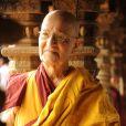 Nelson Xavier será Ananda Rinpoche, líder budista e mestre espiritual dos monges, em 'Joia Rara'
