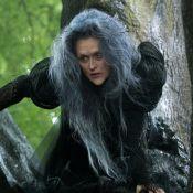 Meryl Streep aparece irreconhecível como A Bruxa de 'Into The Woods'