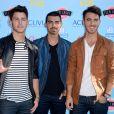Jonas Brothers chega ao fim após oito anos de carreira. 'É muito difícil dizer que algo é para sempre. É o fim de um capítulo, com certeza', afirmou Nick Jonas, em 29 de outubro de 2013