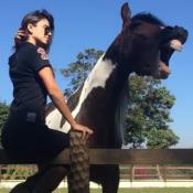 Paula Fernandes leva mordida de cavalo: 'Ele estava brincando, mas doeu'. Vídeo!