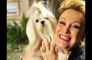 Nicette Bruno comemora 80 anos trabalhando: 'Tá uma alegria no estúdio!'