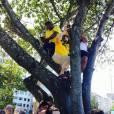 Regina foi flagrada pelos manifestantes em cima de uma árvore