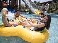Anitta, de roupa, Flávia Alessandra e mais famosos se divertem em piscina. Fotos