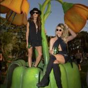 Thaila Ayala, Julia Faria e mais famosos curtem festival 'Tomorrowland'. Fotos!