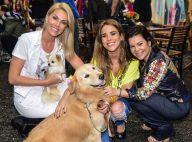 Ana Hickmann, Giovanna Ewbank e mais famosas vão com pets a lançamento de filme