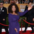 A apresentadora comandava o 'The Oprah Winfrey Show', talk-show de maior audiência da história da tv americana